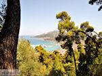 Zakynthos stad | Griekenland | De Griekse Gids nr 56