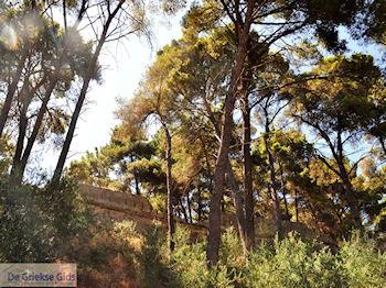 Zakynthos stad | Griekenland | De Griekse Gids nr 60 - Foto van De Griekse Gids