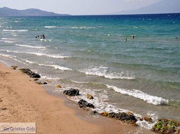 Psarou Beach Zakynthos | Griekenland | De Griekse Gids nr 7 - Foto van De Griekse Gids